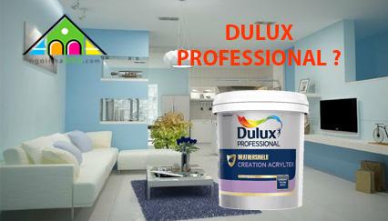 Tại Sao Sơn Dulux Professional Được Dùng Cho Phân Khúc Dự Án?